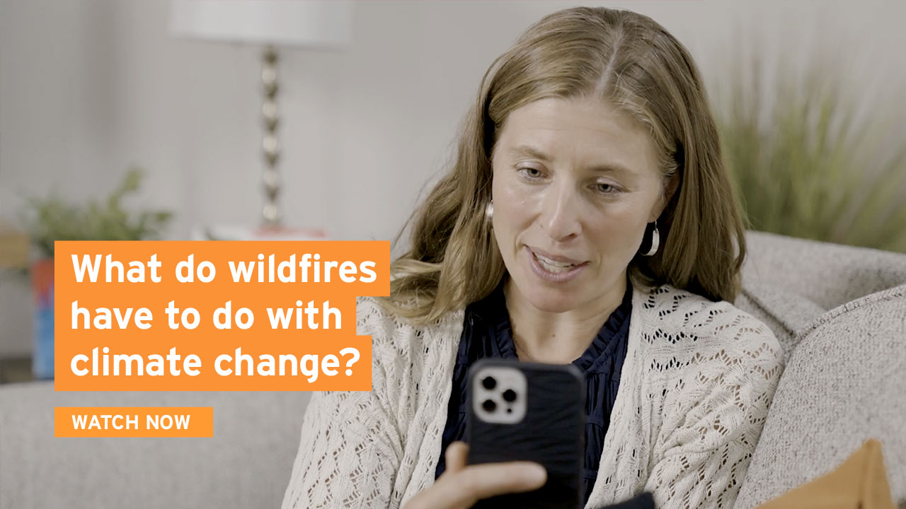 No Dumb Questions - Wildfire Edition withWhat do wildfires have to do with climate change? Dr Emily Fischer